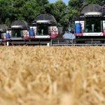 Ростовская область увеличила сбор зерна